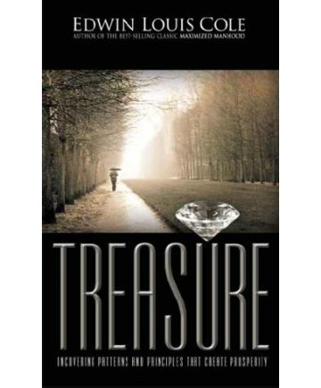 Treasure: Uncovering Patterns and Principles That Create Prosperity