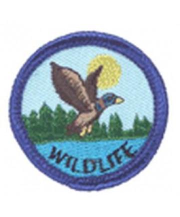 Blue Merits/Wildlife