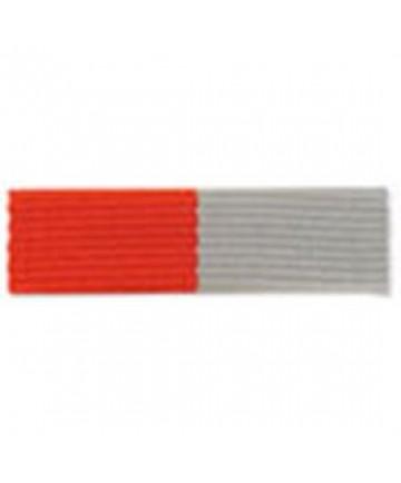 Special Service Medal Ribbon