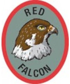 DR Adv Patch/Red Falcon