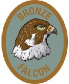 DR Adv Patch/Bronze Falcon