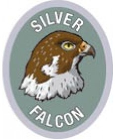 DR Adv Patch/Silver Falcon