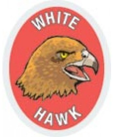DR Adv Patch/White Hawk