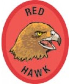 DR Adv Patch/Red Hawk