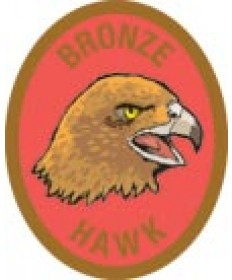 DR Adv Patch/ Bronze Hawk