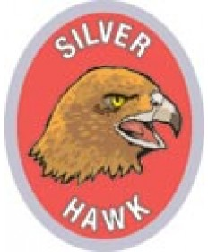 DR Adv Patch/Silver Hawk