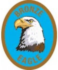 DR Adv Patch/Bronze Eagle