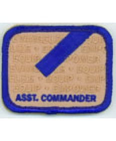 LO Insignia/ Assistant Commander Patch