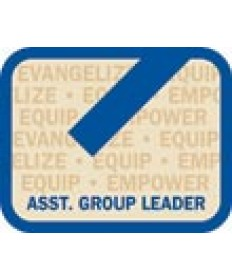 LO Insignia/Assisant Group Leader