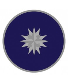 District Staff Pin