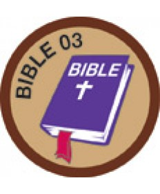 Bible Merit #3-Brown