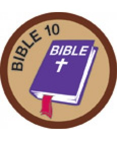 Bible Merit # 10-Brown