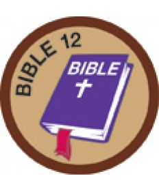 Bible Merit #12-Brown