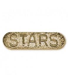 Sponsor Pins. Stars