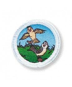 Rainbows Unit Badges. Birds