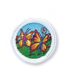 Rainbows Unit Badges. Butterfly