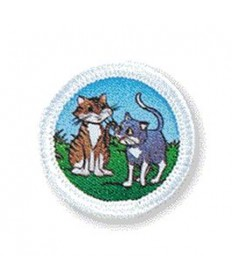 Rainbows Unit Badges. Cats