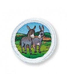 Rainbows Unit Badges. Donkey