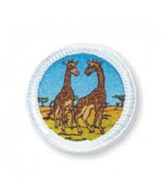 Rainbows Unit Badges. Giraffe