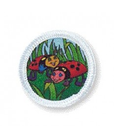 Rainbows Unit Badges. Ladybugs
