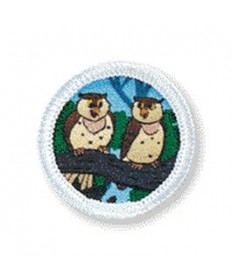 Rainbows Unit Badges. Owls