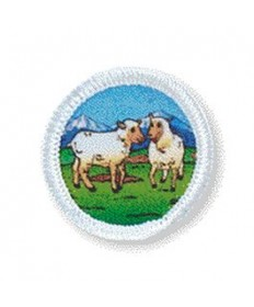 Rainbows Unit Badges. Sheep