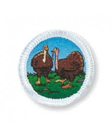 Rainbows Unit Badges. Turkeys