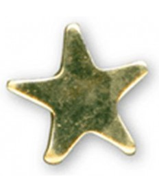 Honor Step Gold Star Pin