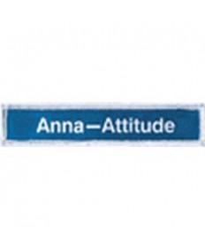 Stars Level Badges. Anna Service Badge