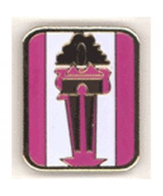 Girls Only Club Unit Pins. Women in Ministry