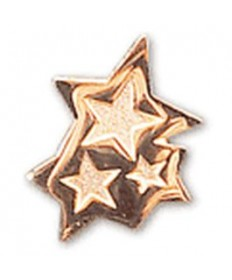 Stars Honor Sponsor Pins..