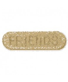Friends Sponsor Pins