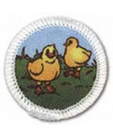 Rainbows Year 3 Unit Badges. Chicks