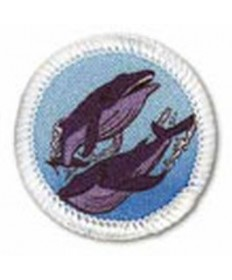 Rainbows Year 3 Unit Badges. Whales
