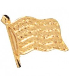 "Adventure Pins. Community Pin. American Flag 3/8"""
