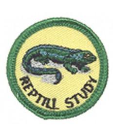 Green Merits/Reptile Study