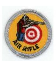 Silver Merit/Air Rifle